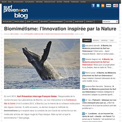 Biomimétisme: l'Innovation inspirée par la Nature