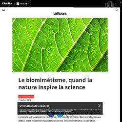 Le biomimétisme, quand la nature inspire la science - Détours