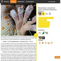Biomimétisme, naturellement génial : Construire efficacement [Partie 2]