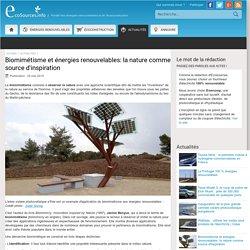 Biomimétisme et énergies renouvelables: la nature comme source d'inspiration