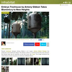 Embryo Treehouse by Antony Gibbon Takes Biomimicry to New Heights