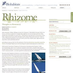 Thoughts on Biomimicry » Biomimicry » Rhizome Blog » Biohabitats Inc.
