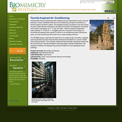 Biomimicry Institute - Termite-Inspired Air Conditioning