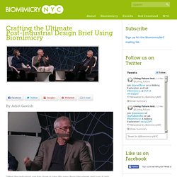 Biomimicry NYC » Crafting the Ultimate Post-Industrial Design Brief Using Biomimicry