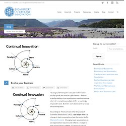 Biomimicry for Creative Innovation Evolve your Business - Biomimicry for Creative Innovation