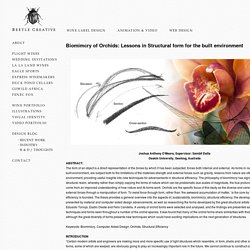 Beetle Creative » Blog Archive BIOMIMICRY OF ORCHIDS - structural form for the built environment