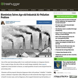 Biomimicry Solves Age-old Industrial Air Pollution Problem