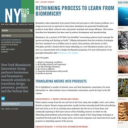 New York Biomimicry Innovators Group
