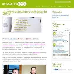 Biomimicry NYC » 101 Ways Biomimicry Will Save the World