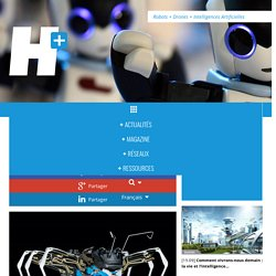 BionicANTs: les fourmis robots de Festo