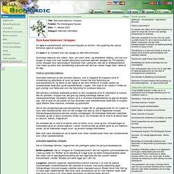 Bionordic