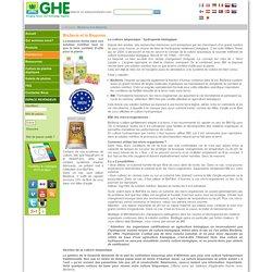 La culture bioponique : hydroponie biologique