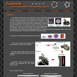Bioprinter @ Forgacslab