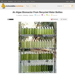 An Algae Bioreactor From Recycled Water Bottles : 7 Steps