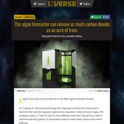 This algae bioreactor can remove as much carbon dioxide as an acre of trees