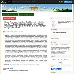 UNIVERSITE MONTEPELLIER II - 2013 - Etude de la biorémédiation de sédiments contaminés par des hydrocarbures aromatiques polycycliques : impact écologique sur la microflore et la meiofaune de la lagune de Bizerte