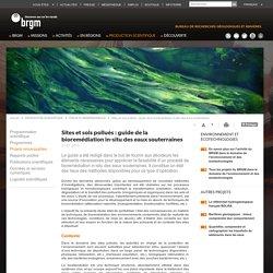 BRGM 21/07/15 Sites et sols pollués : guide de la bioremédiation in-situ des eaux souterraines