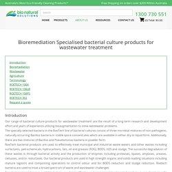 Bioremediation Bacteria