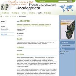 BioSceneMada / En cours / Projets - Forêts et biodiversité à Magadascar