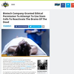 Biotech Company Granted Ethical Permission To Attempt To Use Stem Cells To Reactivate The Brains Of The Dead
