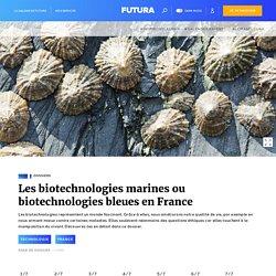 Les biotechnologies marines ou biotechnologies bleues en France