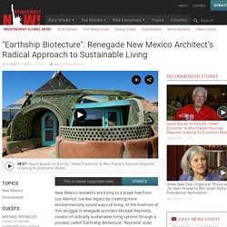 """Earthship Biotecture"" on DemocracyNow.org"