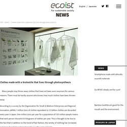 Clothes made with a biotextile that lives through photosynthesis
