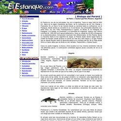 Biotipo del Paraná - El Estanque.com