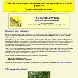 Biotrophic plant pathogens