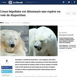 L'ours bipolaire est désormais une espèce en voie de disparition