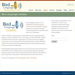 Bird Language Leaders « Bird Language