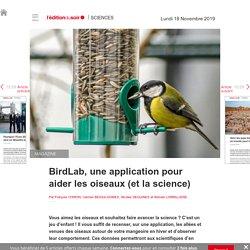 BirdLab, une application pour aider les oiseaux (et la science) - Edition du soir Ouest France - 18/11/2019