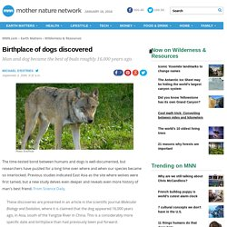 Birthplace of Dogs Discovered