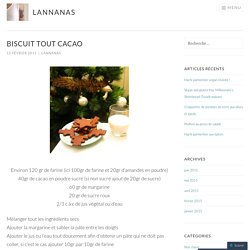Biscuit tout cacao