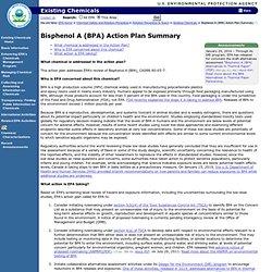 EPA 11/02/13 Bisphenol A (BPA) Action Plan Summary