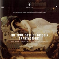 The True Cost of Bitcoin Transactions - Money and State