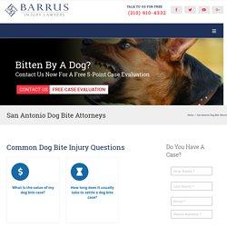 Dog bite Attorney San Antonio