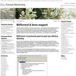 BitTorrent & liens magnet « Fansub Streaming