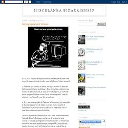 MISCELANEA BIZARRIENSIS: Scénographie de l´Attente
