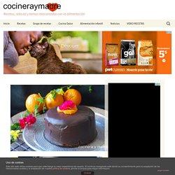 Bizcocho de naranja y chocolate esponjoso - Cocinera y Madre