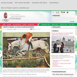 Magyar Olimpiai Bizottság - Könyv készül a lovas olimpikonokról