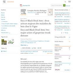 C. R. Biologies 332 (2009) 765–783 Esca et Black Dead Arm : deux acteurs majeurs des maladies du bois chez la Vigne