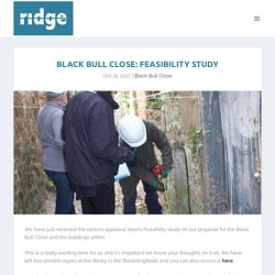 Black Bull Close: Feasibility Study