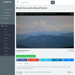 Black Goo and a Dead Forest - ChalPari.com