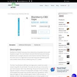 Blackberry CBD Vape - Pro Hemp 420