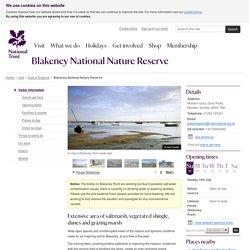 Blakeney National Nature Reserve