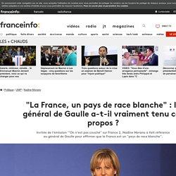 """""""La France, un pays de race blanche"""" : le général de Gaulle a-t-il vraiment tenu ces propos ?"""