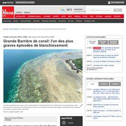 Grande Barrière de corail: l'un des plus graves épisodes de blanchissement