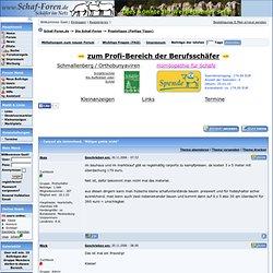 Forum für Schafe Schäfer Schafrassen Schafkrankheiten Haltung Füttern Blauzungenkrankheit