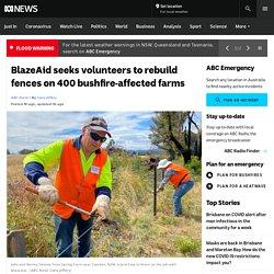 BlazeAid seeks volunteers to rebuild fences on 400 bushfire-affected farms